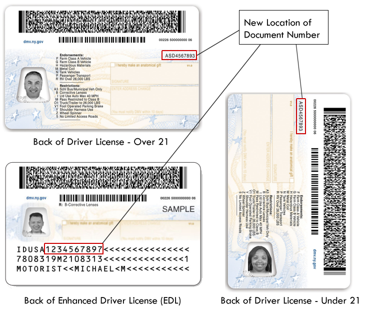 drivers license or identification card application