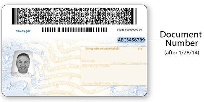 Sample NYS Standard Driver License after January 28, 2014 – Back