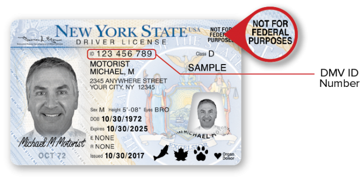Sample NYS Standard Driver License – Front