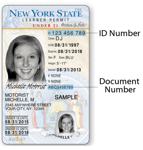 Under 21 NYS Learner Permit – Front