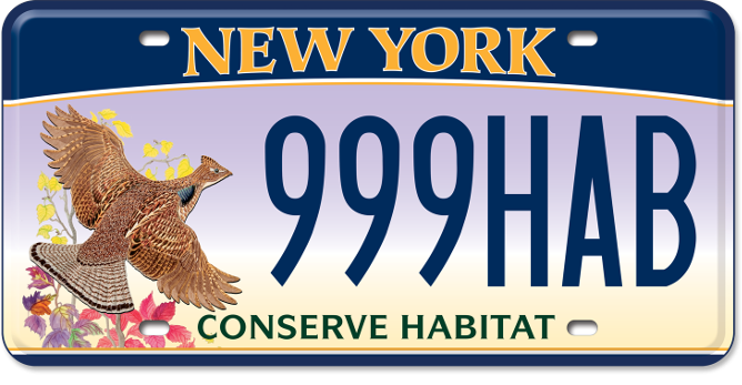 Conserve habitat new york state dmv for Nys fishing license prices