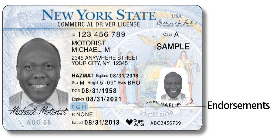 Driver License - Front with the endorsements area highlighted