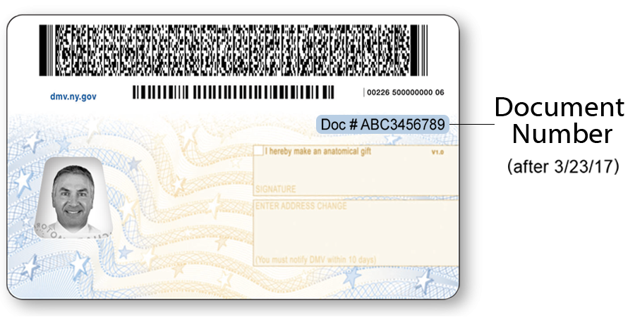 Back of the current NYS Driver License for individuals over age 21.  After 3/23/2017 the document number will have the heading Doc# and be printed in a larger font.