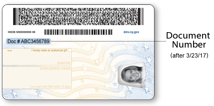 Back of the current NYS Driver License for individuals under age 21.  After 3/23/2017 the document number will have the heading Doc# and be printed in a larger font.