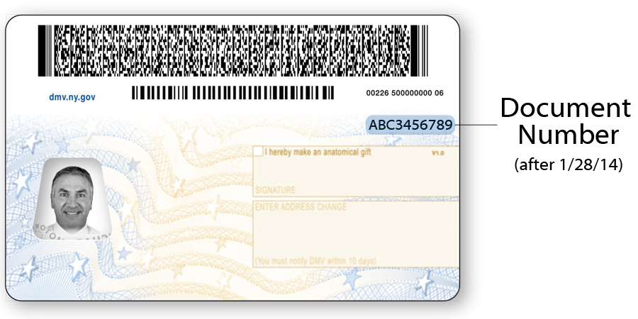 Image of back of current NYS Driver License.  After 1/28/2014 the document number is on the back of the document.