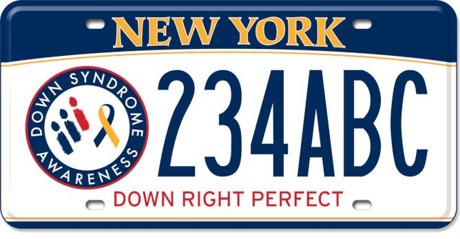 Down Syndrome Awareness Custom License Plate