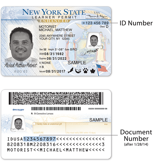 ny state drivers license renewal cost