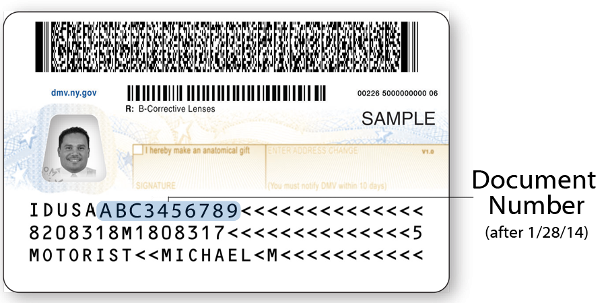 How can you get a New York state ID card from the DMV?