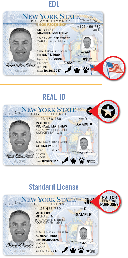 Enhanced, REAL ID and Standard Licenses