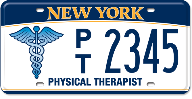 Physical Therapist custom plate