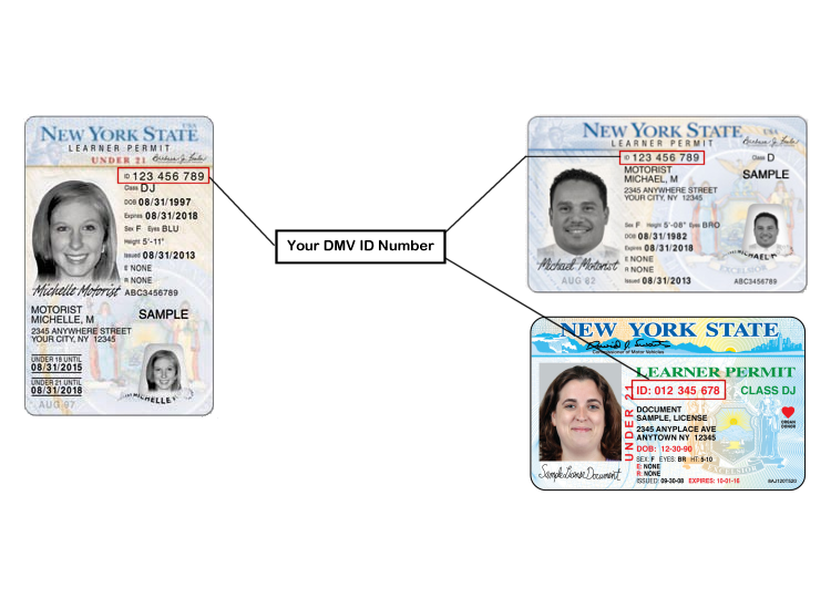 id number on ny drivers license